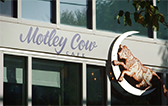Pca lets eat motley thumb
