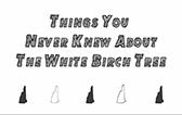 Nh birch thumb